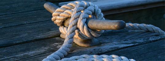Haftpflichtversicherung: Optimal vor den Schadenersatzansprüchen Dritter absichern
