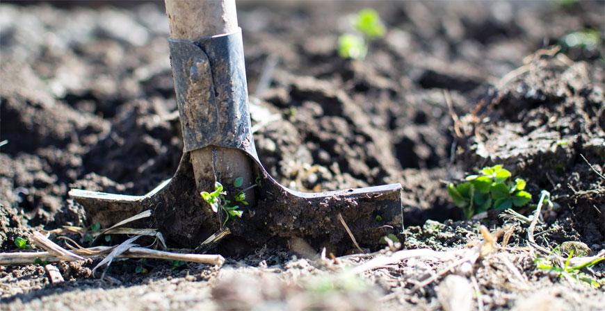 Unfallgefahr im Garten: So kann man vorsorgen
